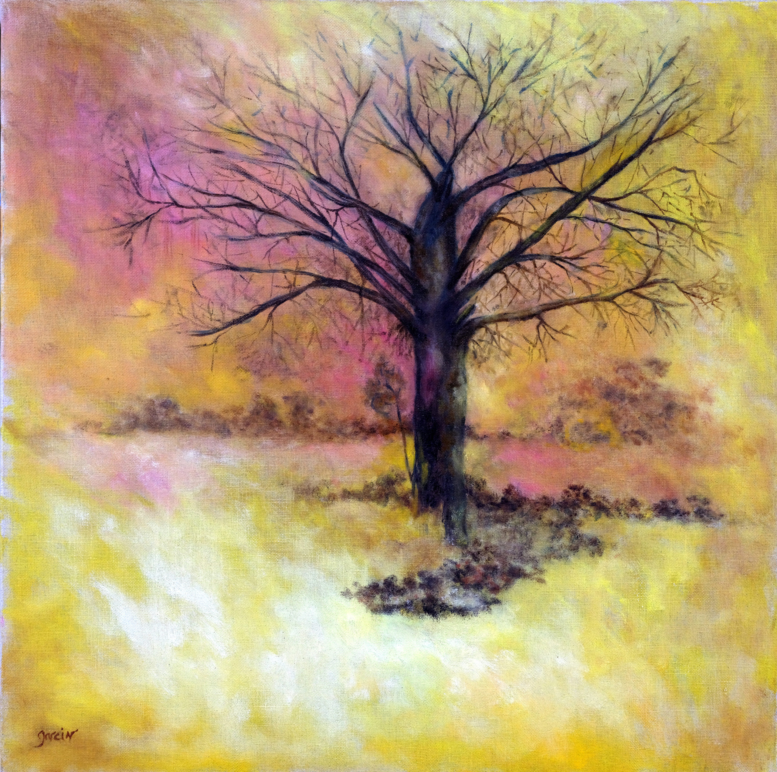 L'arbre, 2017 huile sur toile 60 X 60 cm